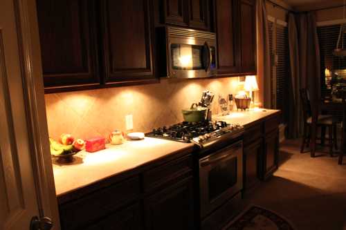 The coolest part about these lights ... & Another Easy Update: Under Cabinet Lighting - Decorchick! ® azcodes.com