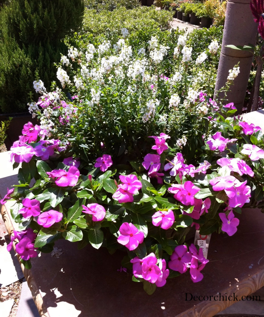Beautiful container garden ideas decorchick   Garden ideaFront Porch Container Gardening Ideas   Home design and Decorating. Gallery Of Beautiful Container Garden Ideas. Home Design Ideas