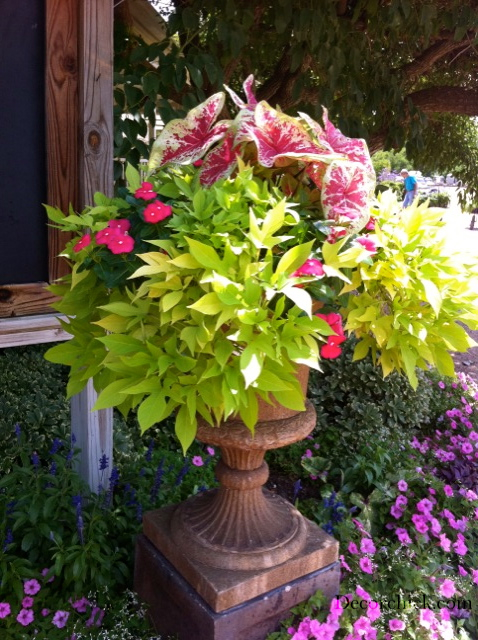 beautiful container garden ideas  decorchick ®, Beautiful flower