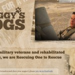 The Home Depot's Celebration of Service with Stiggy's Dogs