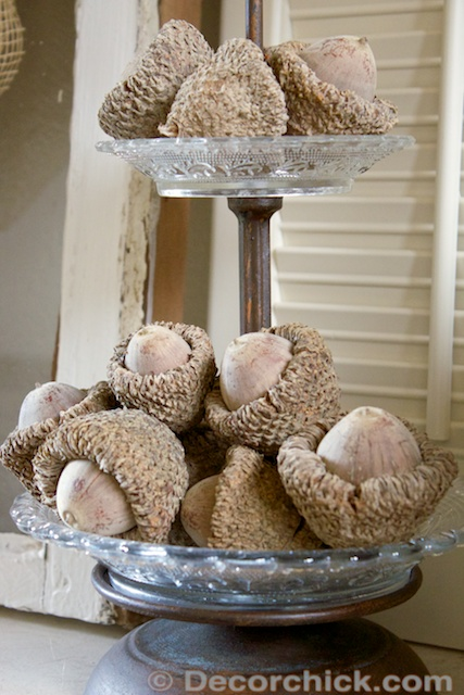 Acorn Display | www.decorchick.com