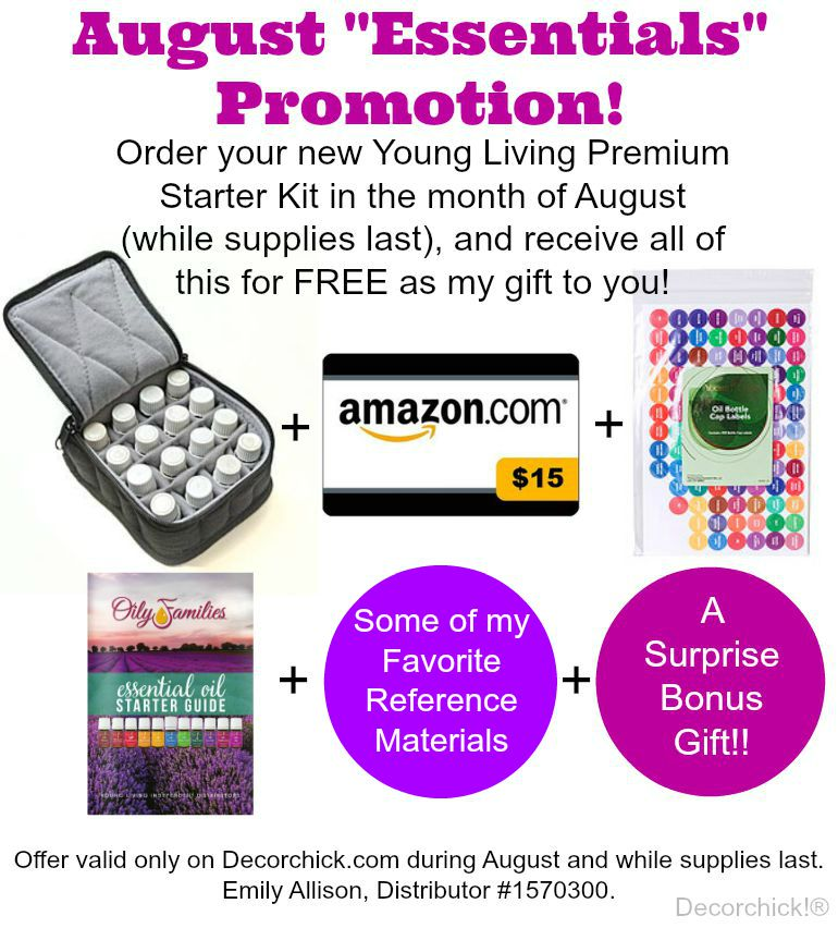 Receive all of these goodies for FREE when you order your New premium Starter Kit! Only on Decorchick.com