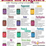 Ditch the Drugstore for Essential Oils! | Decorchick!®