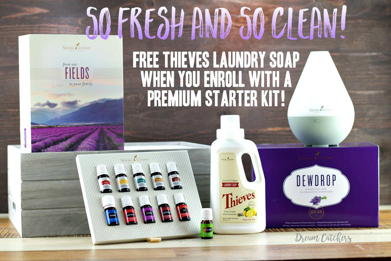 Receive a FREE bottle of Thieves Laundry Soap! | Decorchick!®