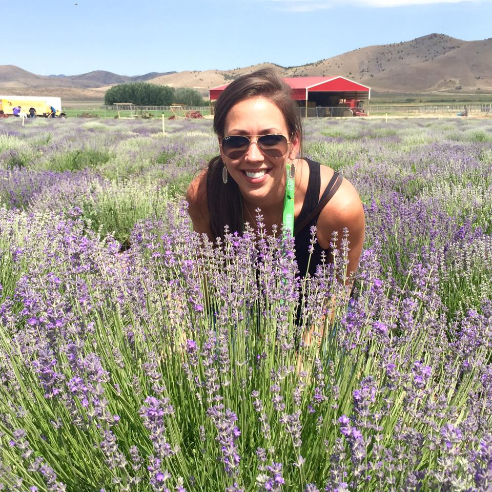 Lavender Fields Young Living | Decorchick!®