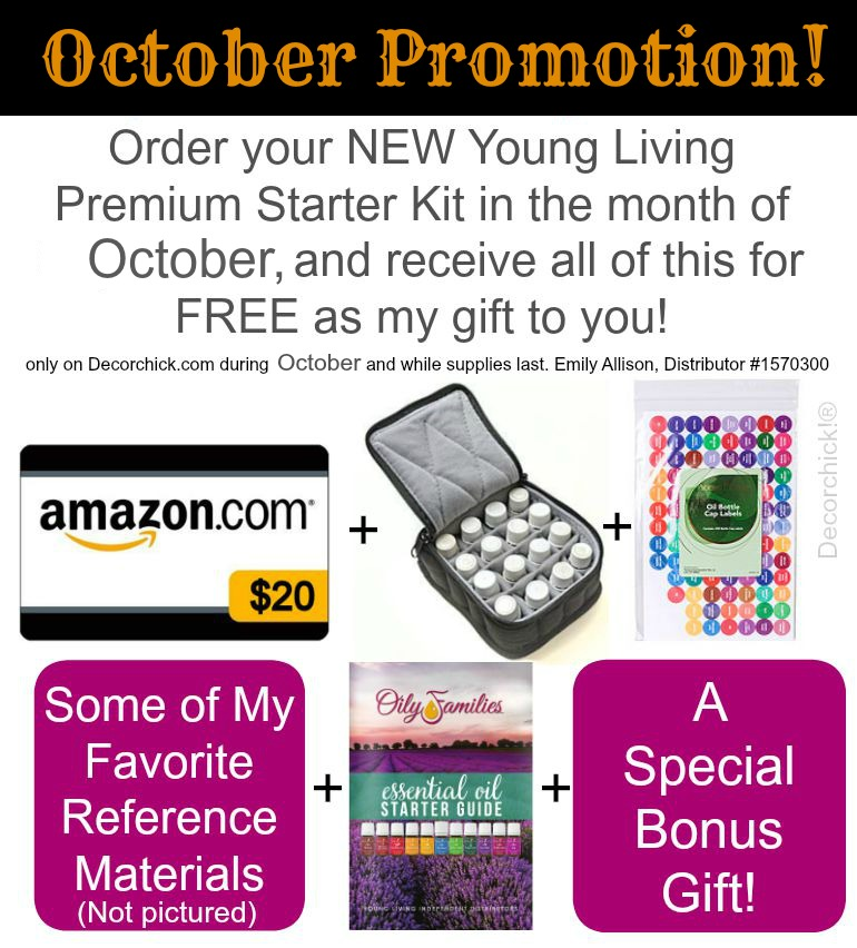 Order your new Premium Starter Kit in October, and receive all of these goodies from me, for free! Only on Decorchick.com