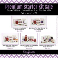 Premium Starter Kit Sale | Decorchick!®