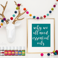 Why we all need Essential Oils | Decorchick!®