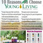 How To Use and Stay Healthy With Young Living Essential Oils | www.decorchick.com