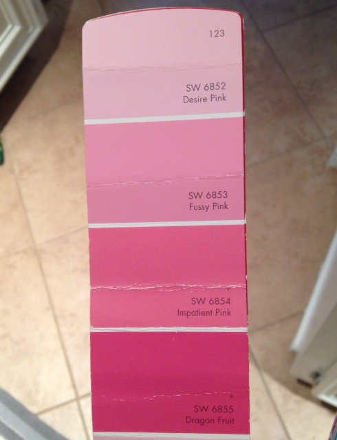 Pink Paint Swatch | www.decorchick.com