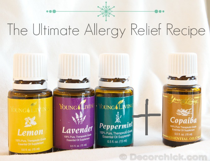 Ultimate Allergy Relief with Essential Oils | www.decorchick.com