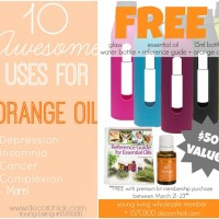 10 Awesome Uses for Orange Oil + 3 FREE Amazing Gifts!! | www.decorchick.com
