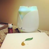 Young Living Diffuser and Starter Oils | www.decorchick.com