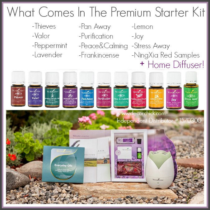 All of This Comes in The Young Living Premium Starter Kit | www.decorchick.com