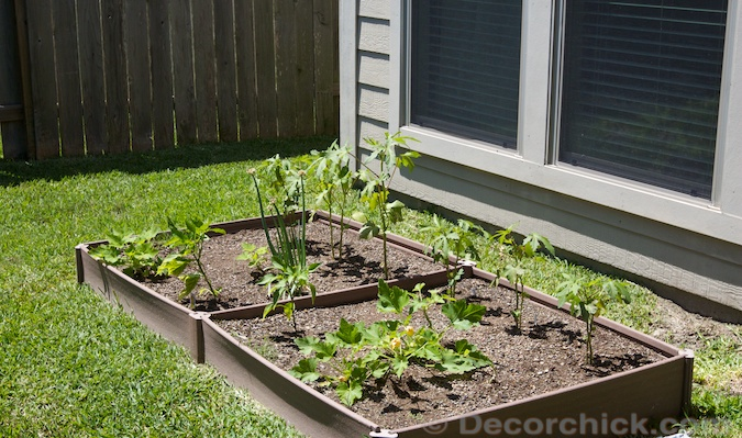 Raised Garden | www.decorchick.com