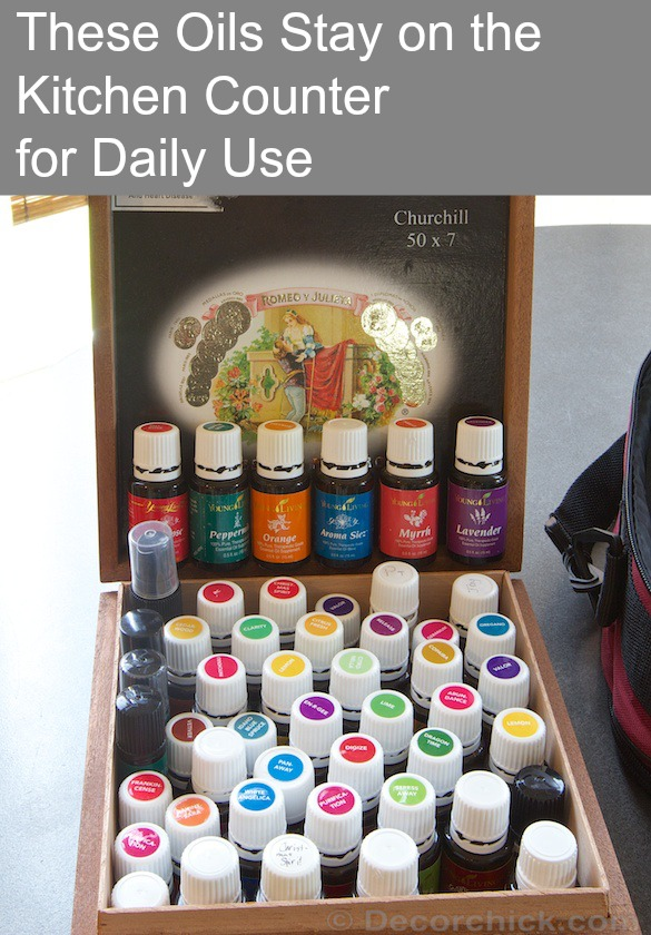 Oils that We Use on a Daily Basis | www.decorchick.com