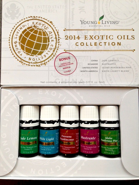 Exotic Oils Collection Kit | www.decorchick.com
