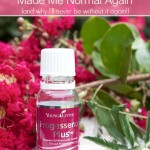 How To Balance Hormones with This Natural Progesterone Serum   Decorchick!®