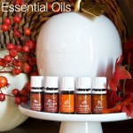 Fall Scent Combinations with Essential Oils | Decorchick!®