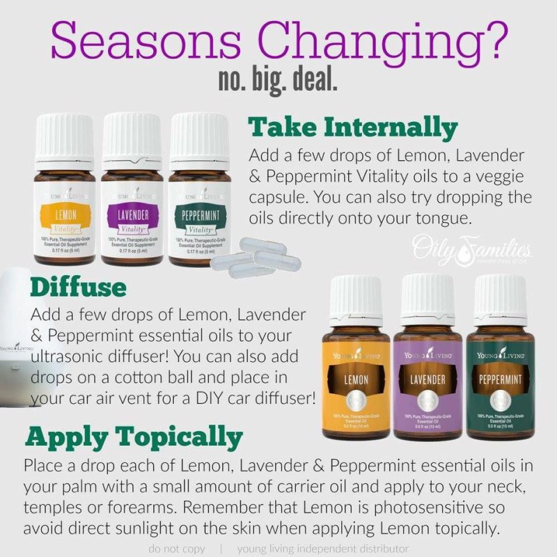 What to do for those Seasonal Changes, the Healthy Way | Decorchick!®