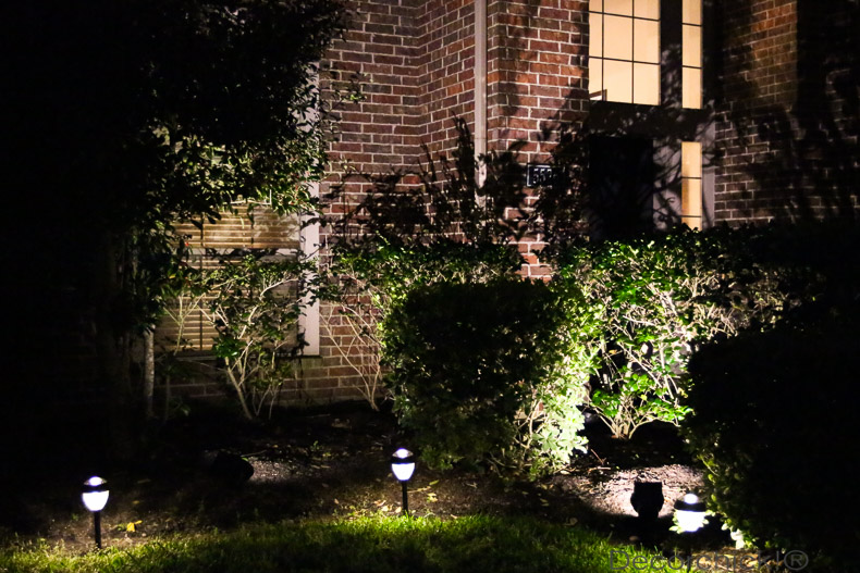 Yard Lit with Solar Lights | Decorchick!®