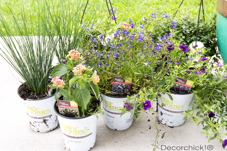 BHG Plants from Walmart | Decorchick!®