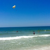 Gulf Shores Alabama | Decorchick!®