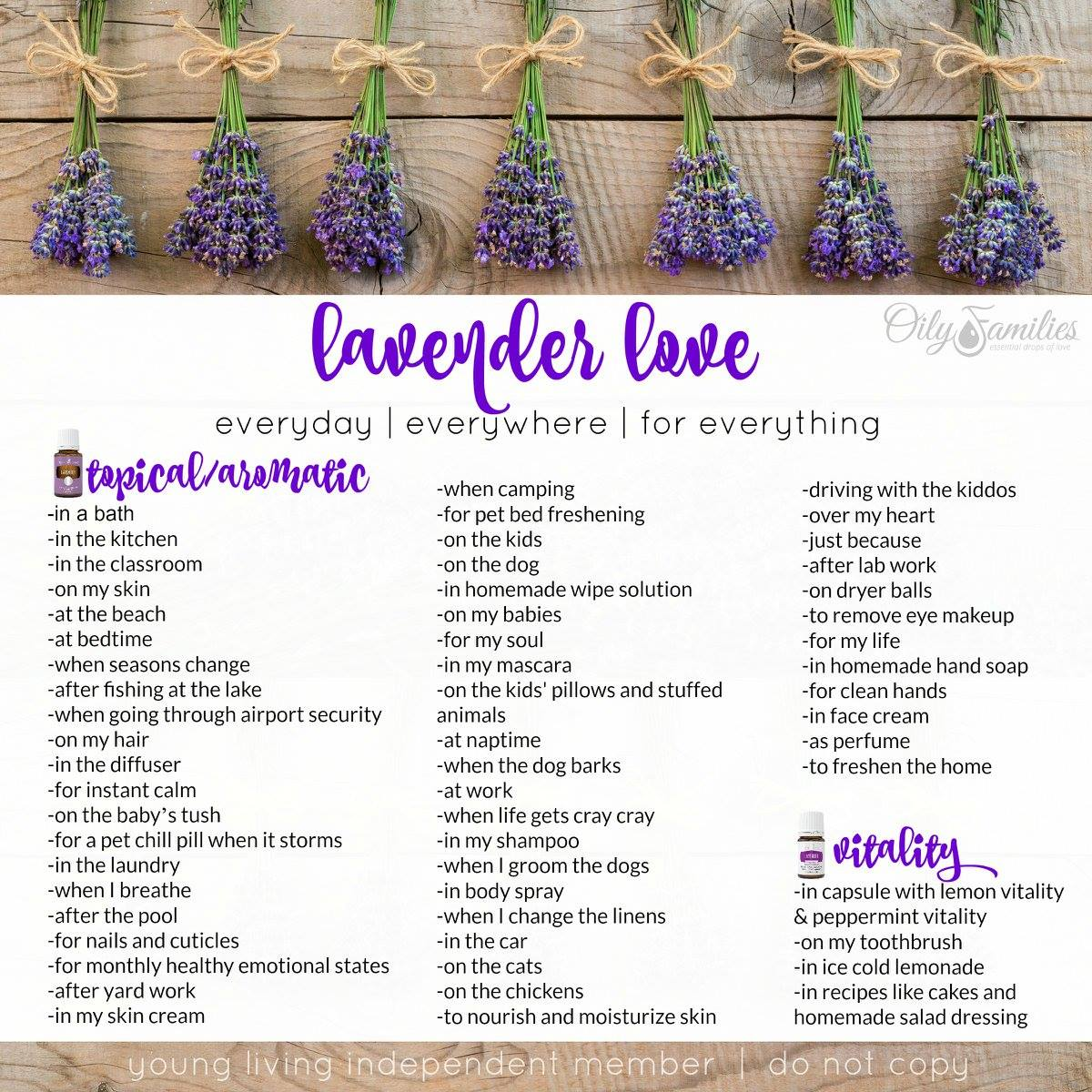 So Many Lavender Essential Oil Uses! | Decorchick!®