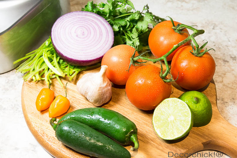 Salsa Ingredients | Decorchick!®