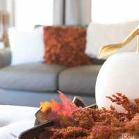 Fall Tray in Living Room | Decorchick!®
