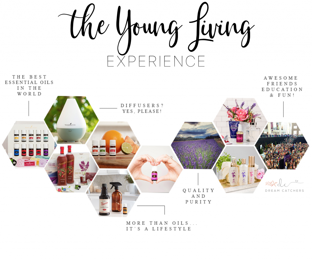 How And Why To Join Young Living Essential Oils Decorchick